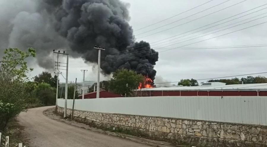 Kandıra'da Raf Fabrikasında Yangın